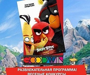 Кинотеатр GOODWIN CINEMA